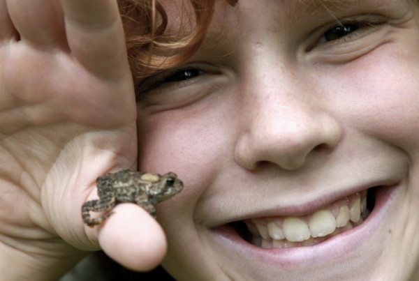 A close up portrait of a boy with curly red hair smiling at the camera as he holds a small toad.